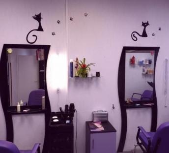 Сфера услуг парикмахерские